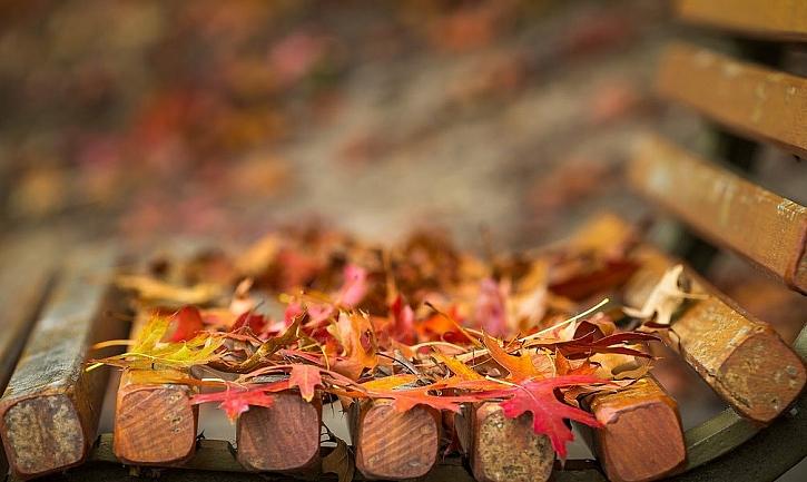 Podzim, to je práce i zasloužený odpočinek