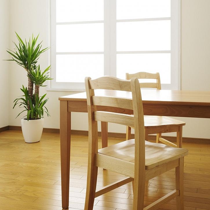 Renovace nábytku - opravy