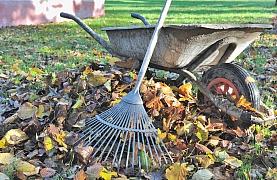 Vyrobte si hnojivo z přírodních zdrojů, kompostujte!