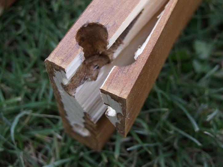 Lepidlo Ceys na dřevo