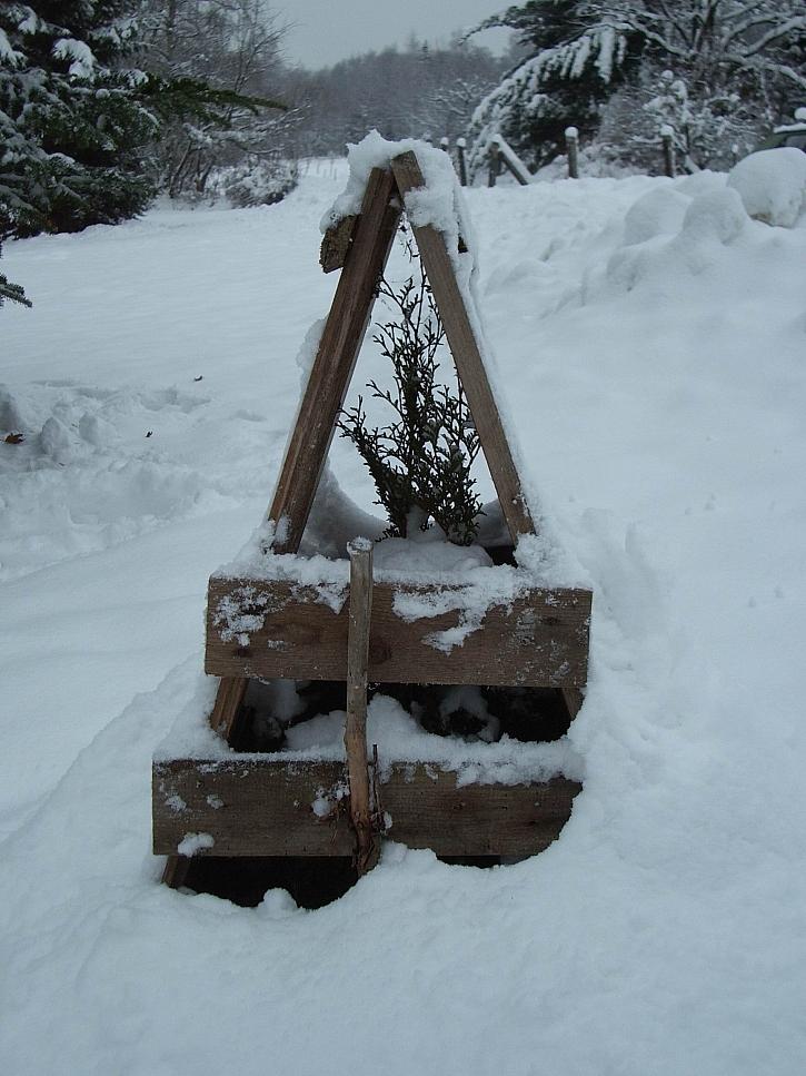 Dřevěná ochrana