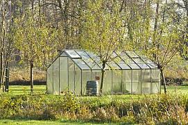 Připravte skleník na novou sezónu. 3 kroky, jak na to