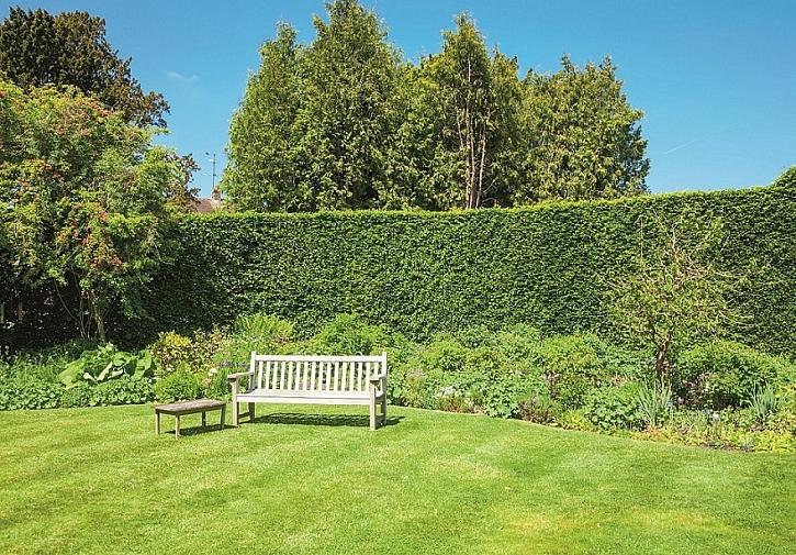 Jak založit nový trávník (Zdroj: Hornbach)