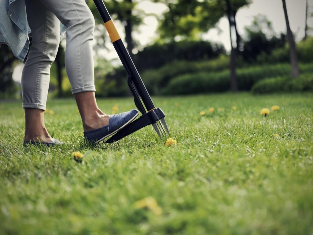 Na jaře pečujte o trávník