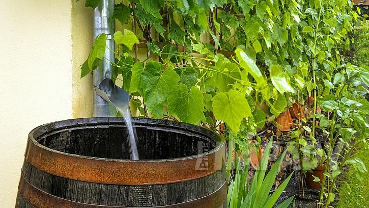 Nenechávejte odtékat dešťovou vodu jen tak: Můžete s ní zalévat zahradu, ale i splachovat záchod 1