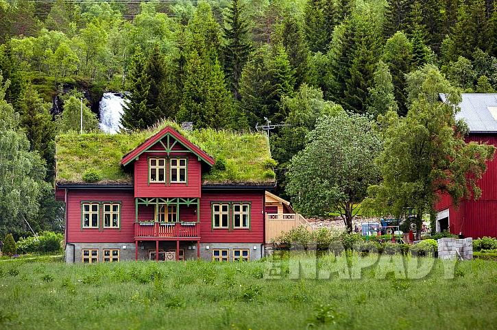 Tráva na střeše