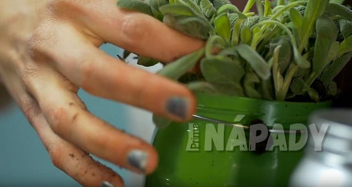 DIY: Závěsný panel s květináči: zasaďte bylinky
