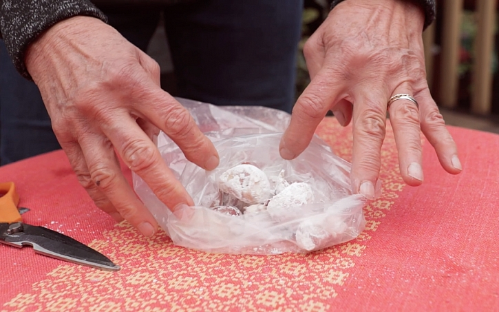 Honza s Lídou budou před zimou vysazovat česnek