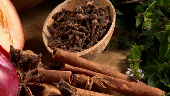 Skořice, hřebíček a badyán