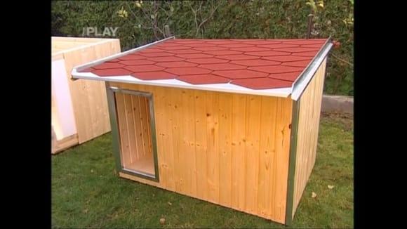 Výroba psí boudy