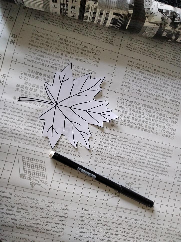 Obrázek listu