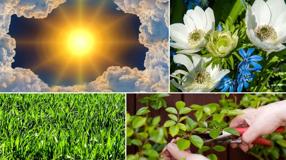 Předpověď počasí na první podzimní víkend: Už víte, co budete dělat na zahradě?