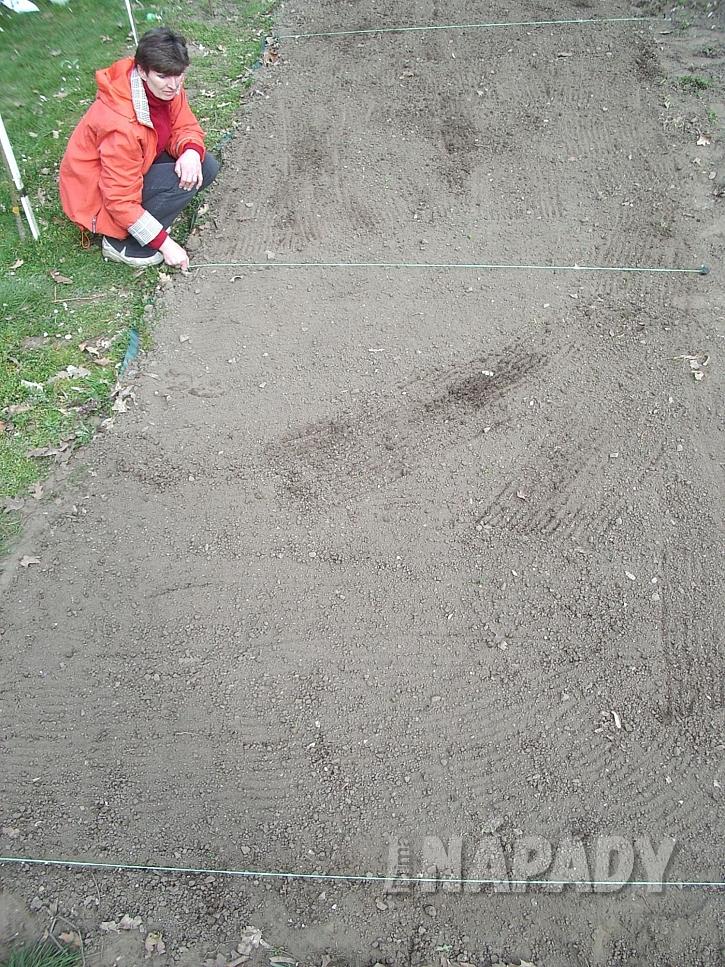 3. provedeme rozdeleni plochy na stejne dily pred vysevem
