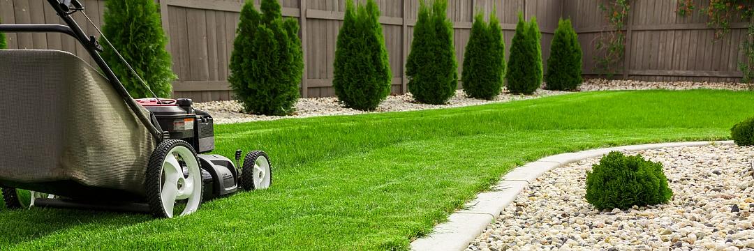obrázek tématu: Péče o trávník
