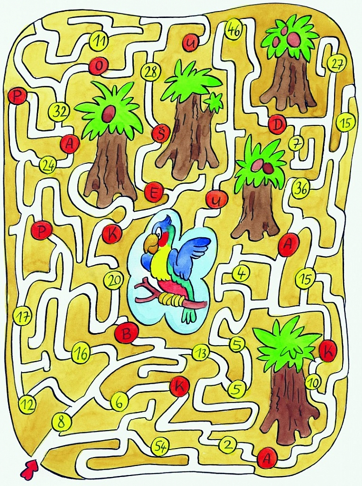 Tip na knihu: Kreslené hlavolamy pro malé školáky