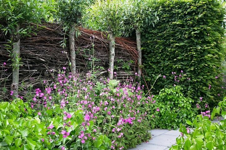 Z vrbového proutí vytvoříme krásnou dělící stěnu