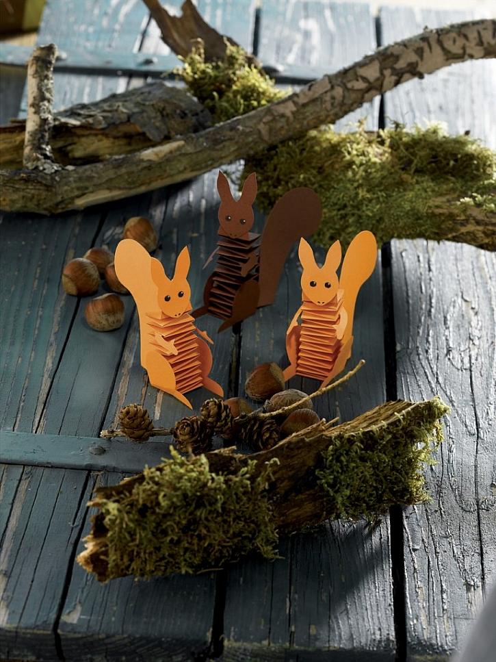 Pilné veverky