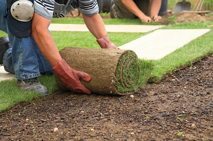 Rychlé založení trávníku je řešeno pokládkou trávníkových pásů