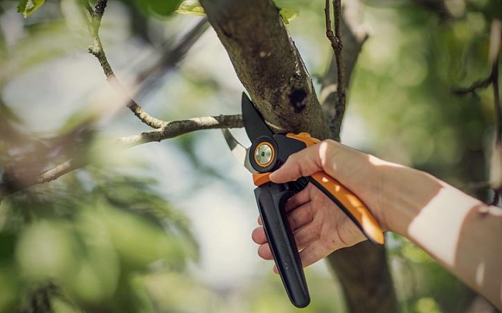 Práci na zahradě usnadní kvalitní zahradní nářadí