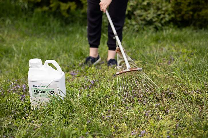 Ke zlepšení vitality rostlin a k bohatší úrodě dospějete s podpůrnými přípravky pro růst rostlin