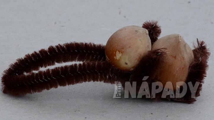 Veverky z lískových oříšků: z drátku vytvořte přední tlapky