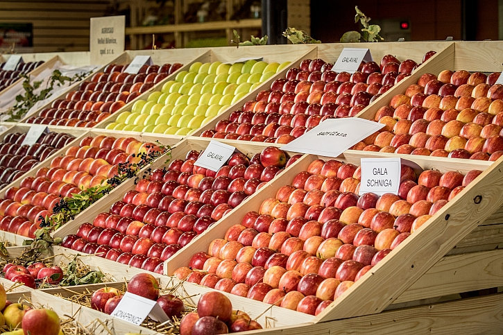Zdravé plody
