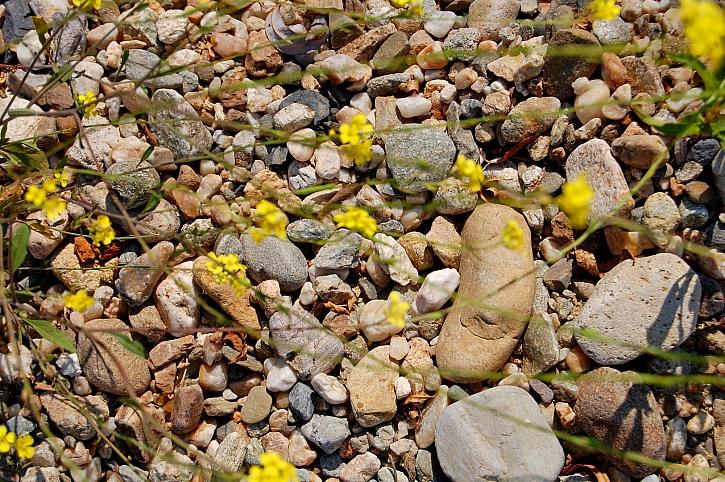 Drobné kamínky