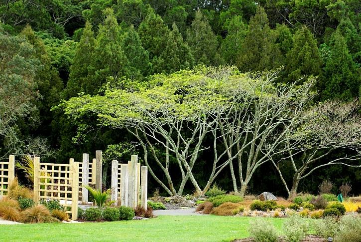 Dřevěné dělící stěny v zahradě člení prostor