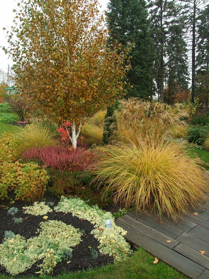 Podzimní zahrada hýří barvami