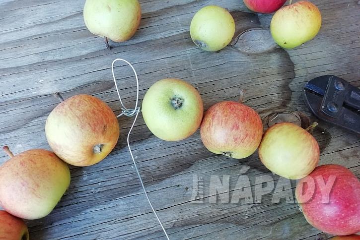Podzimní věnec z malých jablíček: svažte do kruhu