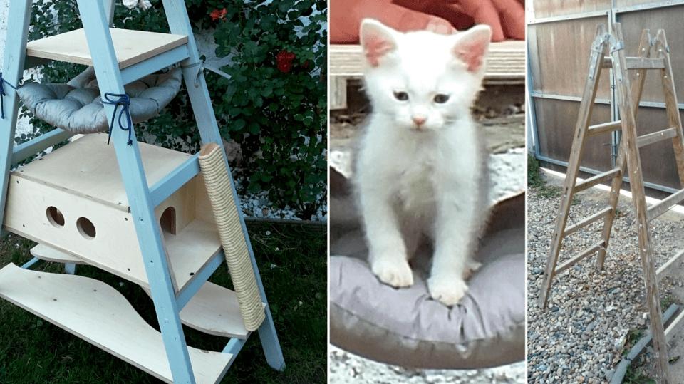 Jak vyrobit pro kočku domek a hernou a škrabadlem ze štaflí