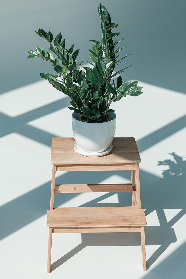 Dřevěný stojan na květiny