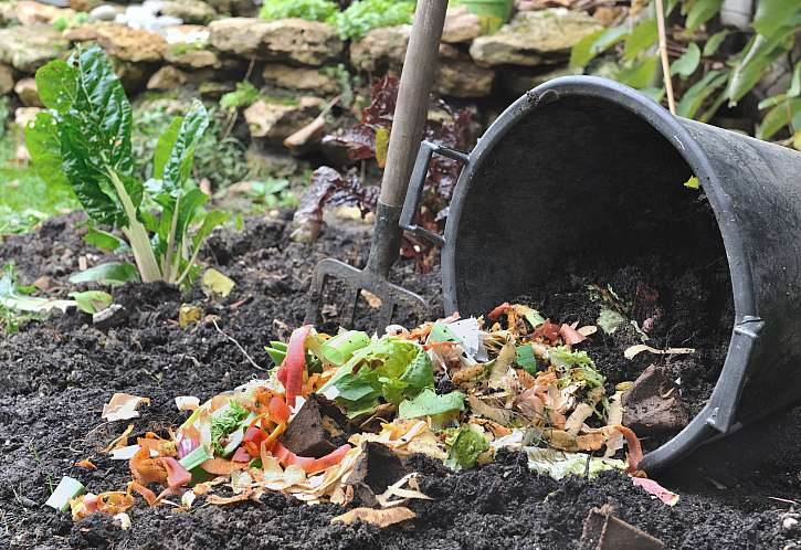Po dozrání můžete hnojivo použít na své zahradě