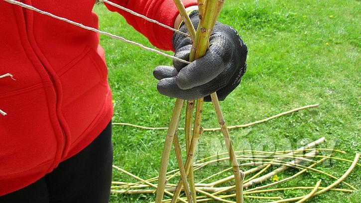 Jak pěstovat hrášek v nádobě: horní část konstrukce svažte