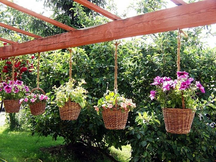 Výběr nádob na květiny