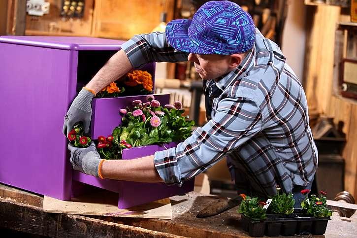 Sázení květin