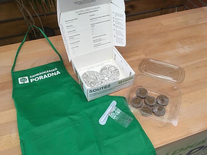 Sada pro pěstování muškátů Prima DOMA Box