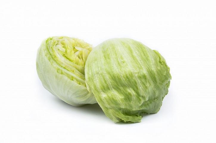 Nová semena a osiva ledového salátu