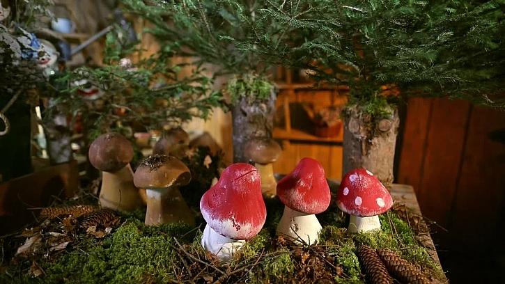 Betonové houbičky