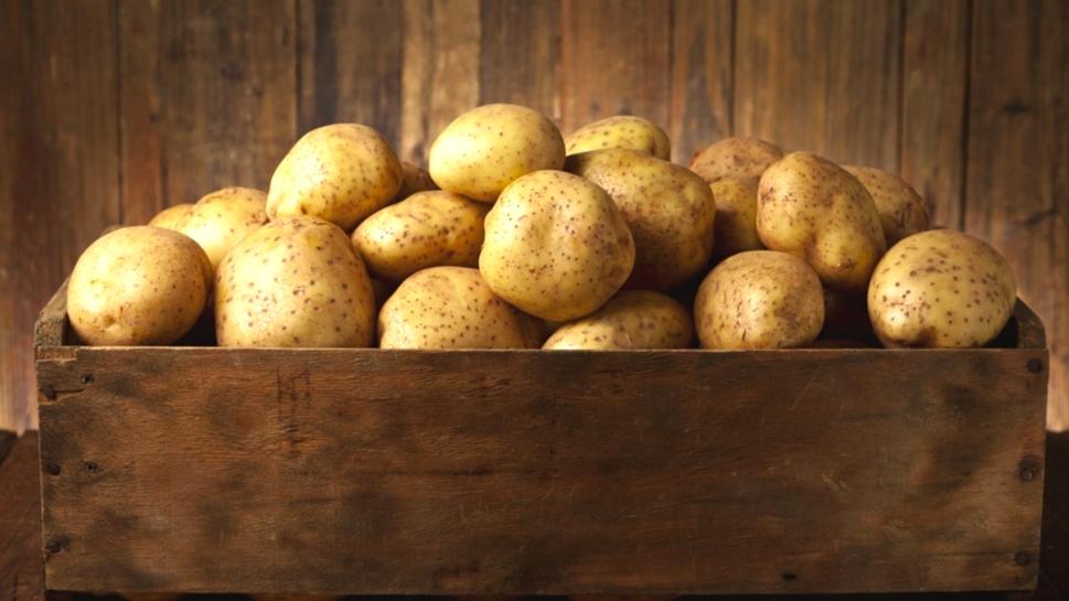 Jak brambory skladovat a jaké si v obchodě kupovat