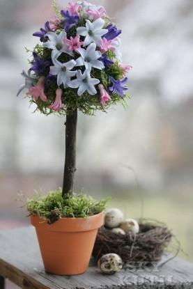 Hyacintový stromek