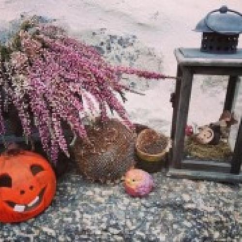 Podzimní výtvarné dílny