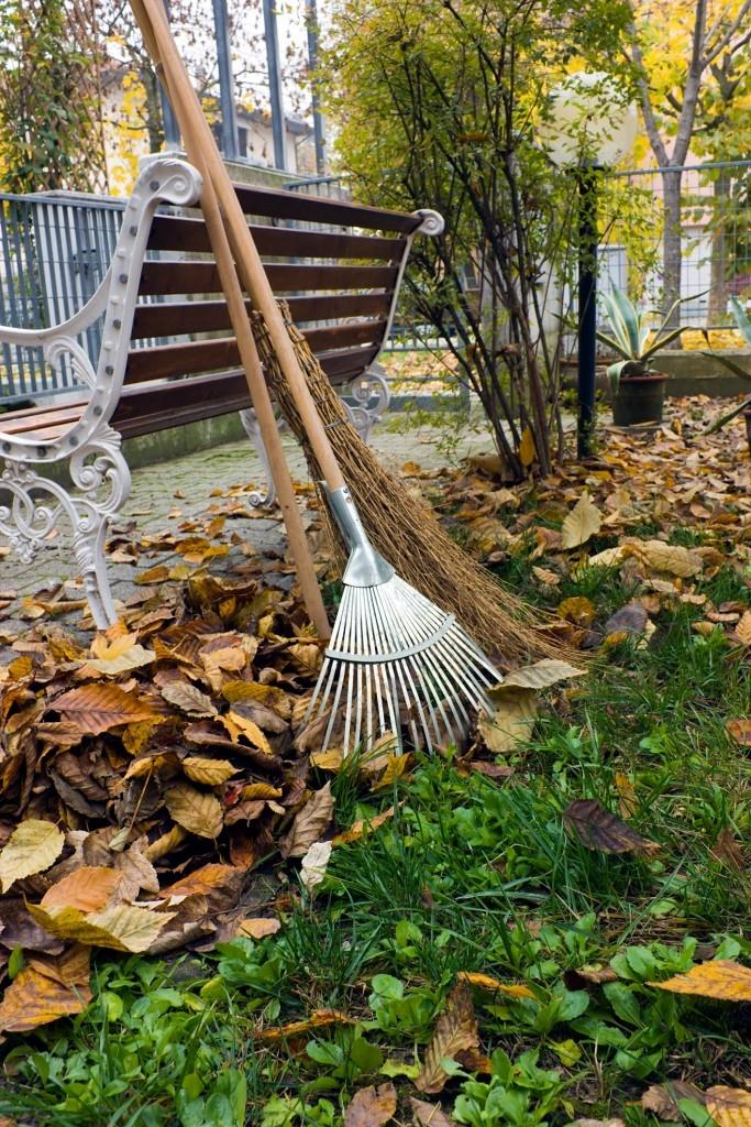 Úklid listí