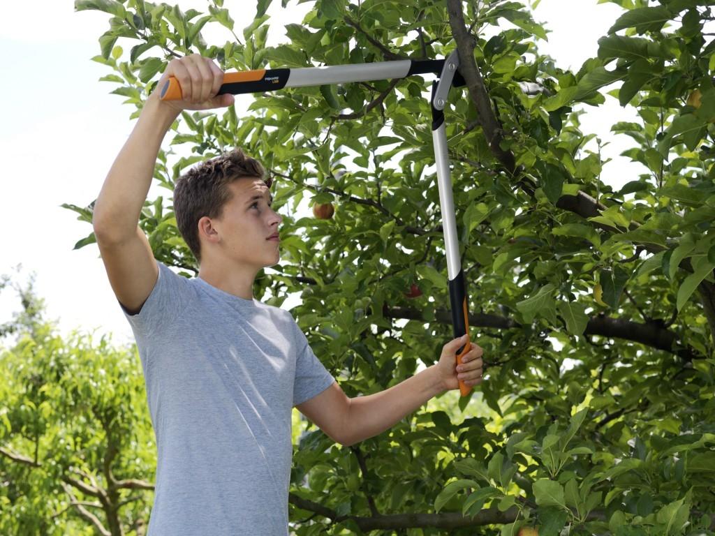 Prořezávání větví na zahradě a v lese