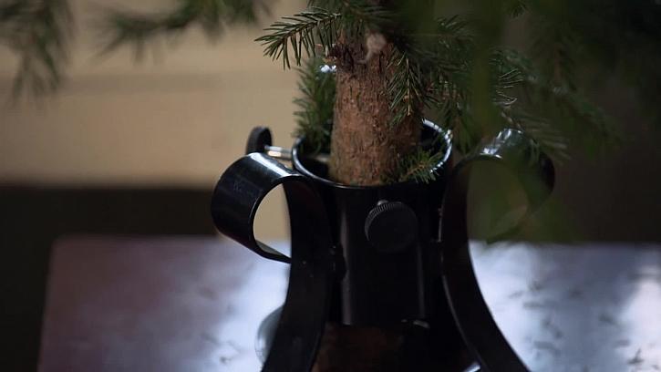 Kovový stojan na strom