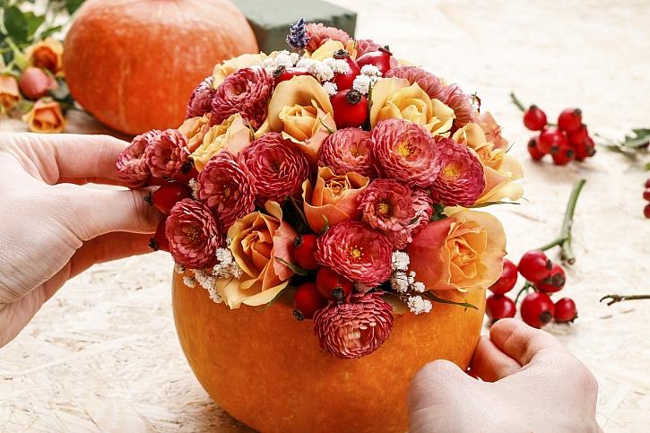 Osázení dýně květinami