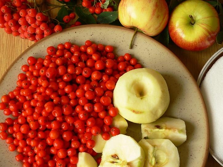 Recept na kompot, džem a víno z jeřabin