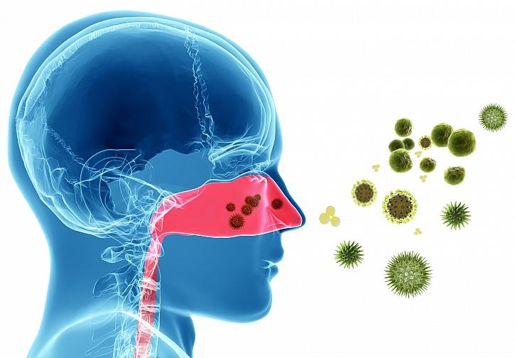 Alergeny na nosní sliznici