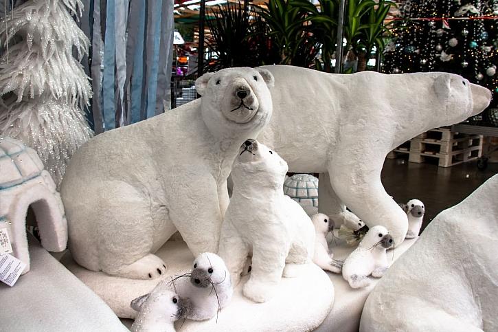 polární vánoce