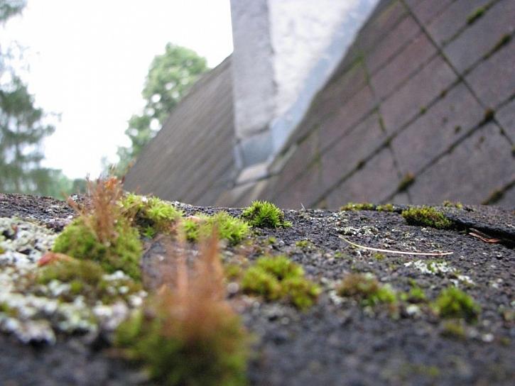 Rizika při rekonstrukci starých eternitových střech